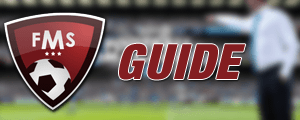FM 2014 Guide