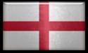 FM 2014 Flag