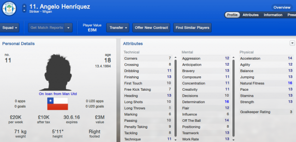 fm13 player profile, henriquez2, 2012 profile