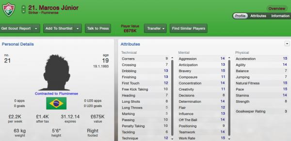 fm13 player profile, junior2, 2012 profile