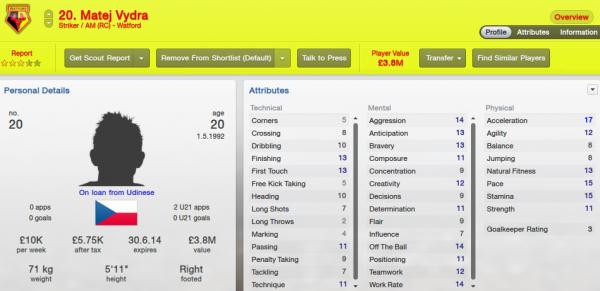 fm13 player profile, vydra, 2012 profile