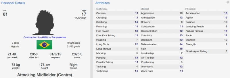 FM 2014 Nathan initial profile