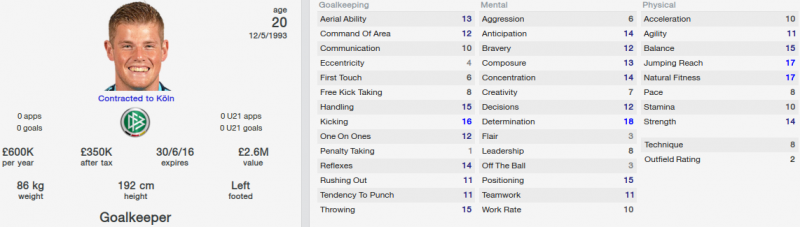 timo horn fm 2014 initial profile