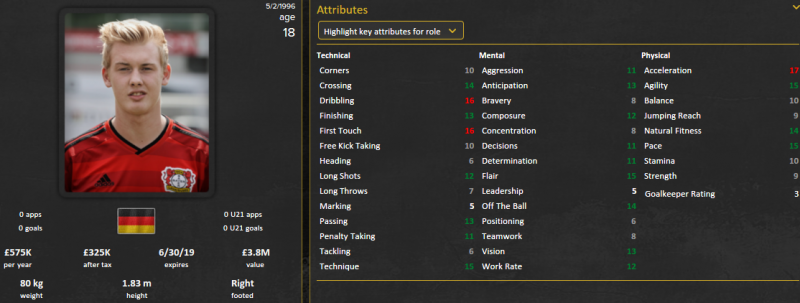 julian brandt fm 2015 initial profile patch 15.3