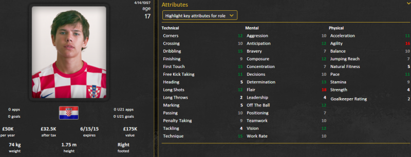ante coric fm 2015 initial profile patch 15.3