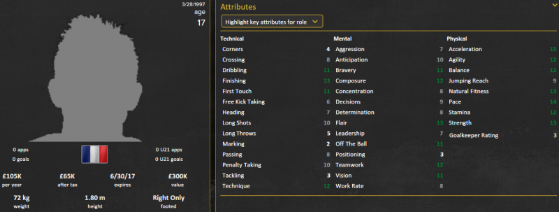 thierry ambrose fm 2015 initial profile patch 15.3