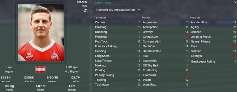 kevin wimmer fm 2015 initial profile