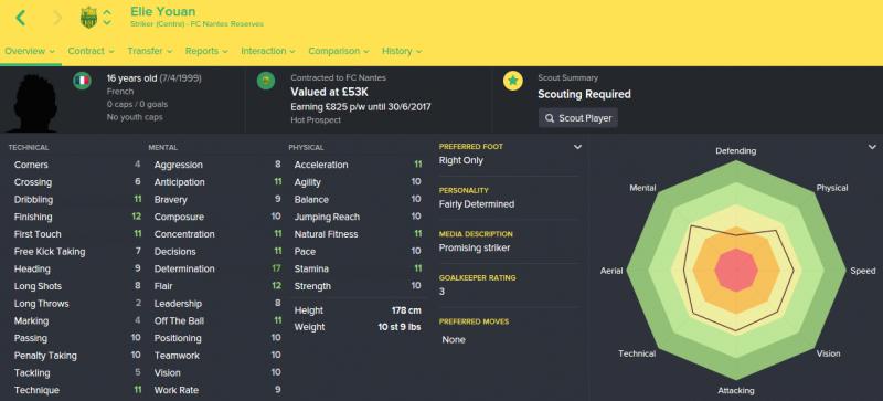 FM16 player profile, Elie Youan, 2015 profile