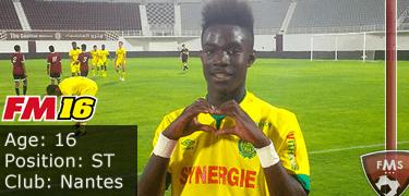 FM16 player profile, Elie Youan, image