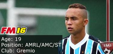 FM 2016 player profile of Everton